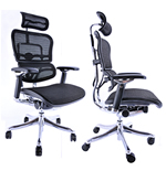 Ergohuman Plus Chair - Mesh or Leather