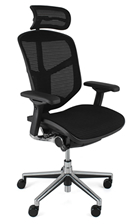 Enjoy Ergonomic Office Chair with Head Rest