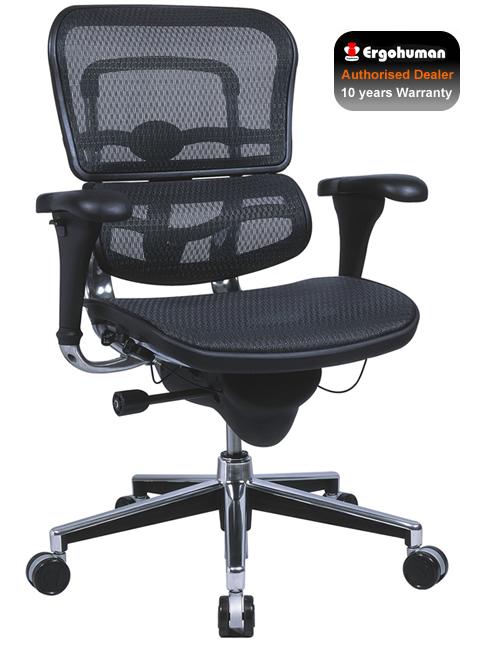 ergohuman office chair ergohuman chair mesh office chair the original ergo. Black Bedroom Furniture Sets. Home Design Ideas