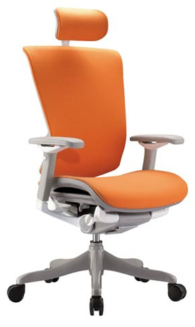 Nefil Fabric Ergonomic Office Chair with Head Rest