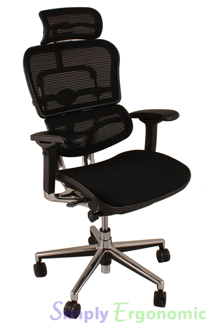 Ergohuman Office Chairs