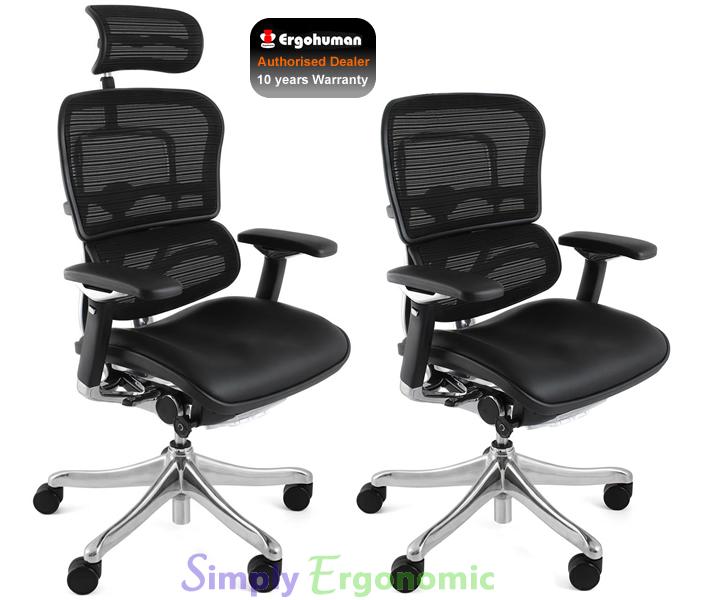 ergohuman plus leather seat mesh back ergonomic office chair ergohuman plus. Black Bedroom Furniture Sets. Home Design Ideas