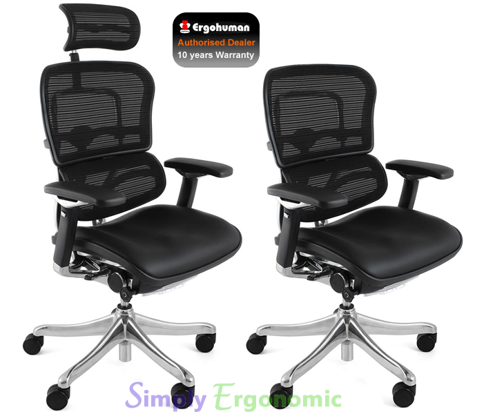 Ergohuman Plus Chair Leather Seat Mesh Back Original