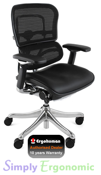 Ergohuman Plus Chair Leather Seat, Mesh Back