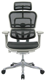 Ergohuman Chair 2010