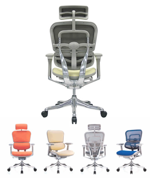 ergo human chairs in colours