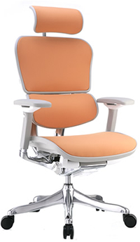 Ergohuman Plus Office Chair