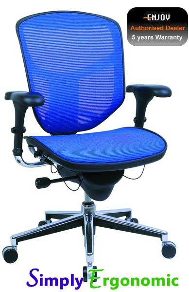 Enjoy Ergonomic High Back Mesh Office Chair Mesh Office