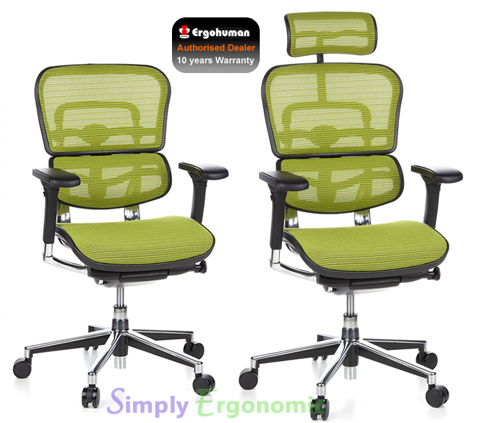 Options Available Ergohuman Fabrics  sc 1 st  Simply Ergonomic & Ergohuman Green Mesh Chair | the original ergohuman office chair ...
