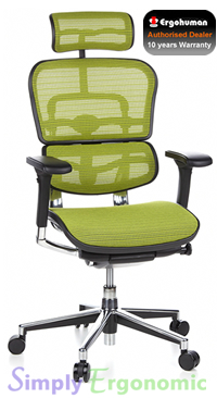 Ergohuman Mesh Chair - Green Mesh with Head Rest