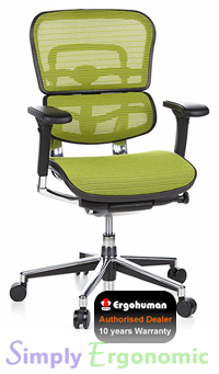 Ergohuman Mesh Chair - Green Mesh