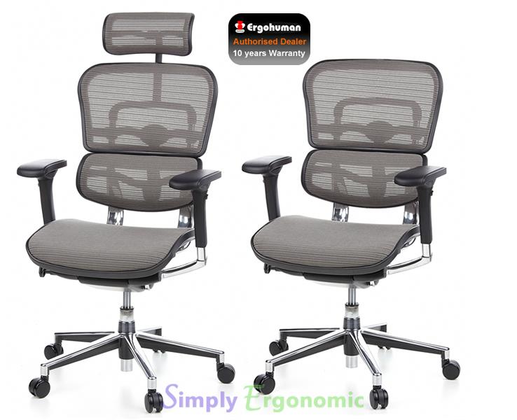 ergohuman mesh chair original ergohuman office chair grey mesh chair. Black Bedroom Furniture Sets. Home Design Ideas