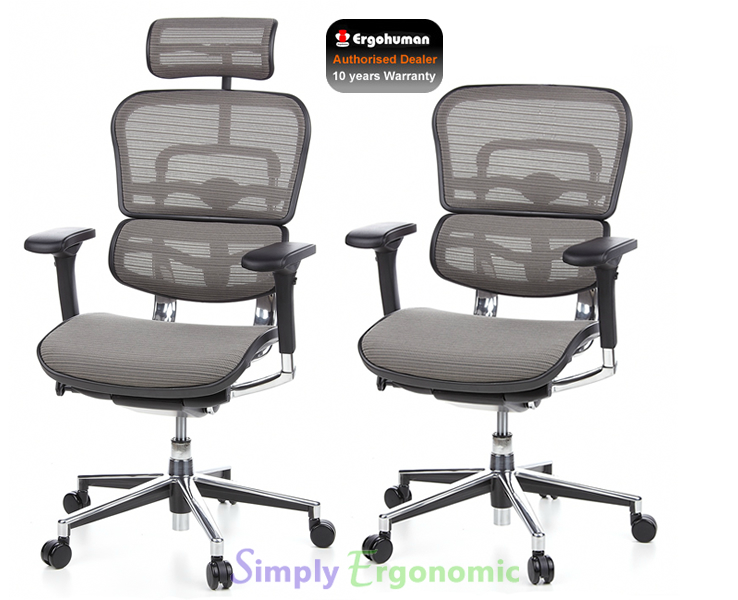 Ergohuman Grey Mesh Chair | Ergohuman Ergonomic Office Chair ...