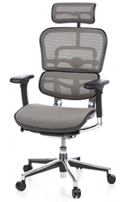 Ergohuman Mesh Chair - Grey Mesh with Head Rest