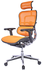 Ergohuman Mesh Chair - Orange Mesh with Head Rest