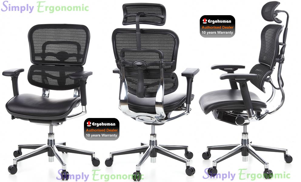 5b179c54f25 Ergohuman Chair Leather Seat Mesh Back