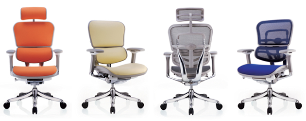 Ergohuman Plus Chairs set