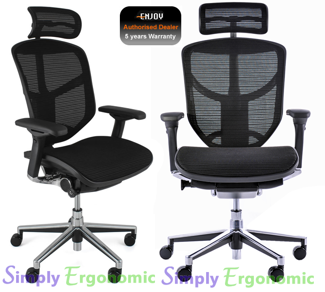 Enjoy Ergonomic High Back Mesh Office Chair With Head Rest From