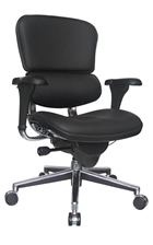 Ergohuman Leather Ergonomic Office Chair no Headrest