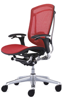 Contessa Ergonomic Mesh Office Chair