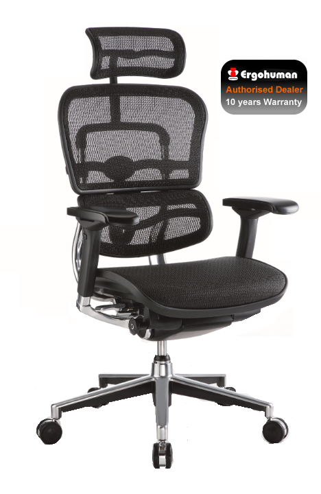 Options Available  sc 1 st  Simply Ergonomic & Ergohuman Ergonomic Mesh High Back Office Chair 2010