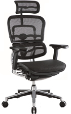 Ergohuman Ergonomic Office Chair 2010