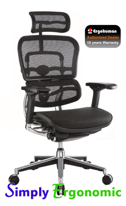 New Ergohuman Chair 2010