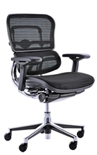 Ergohuman Chair - Black