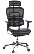 Ergohuman Leather Seat, Mesh Back with Head Rest