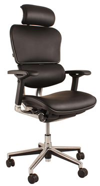 Ergohuman Leather High Back Ergonomic Chair
