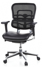 Ergohuman Chair Leather Seat, Black Mesh Back