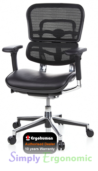 Ergohuman Chair Leather Seat, Mesh Back