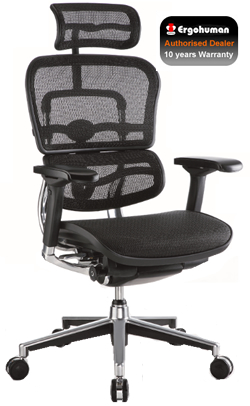 Ergohuman Mesh High Back Ergonomic Office Chair 2010