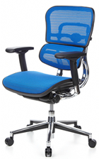 Ergohuman Office Chair - Blue Mesh