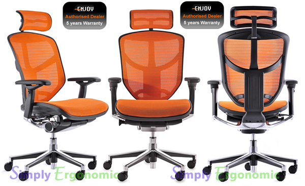 Ergohuman Enjoy Ergonomic Office Chair