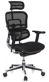 Ergohuman Ergonomic Office Chair with Head Rest
