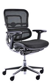 Ergohuman Ergonomic Office Chair no Head Rest