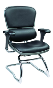 Ergohuman Leather Visitors Chair