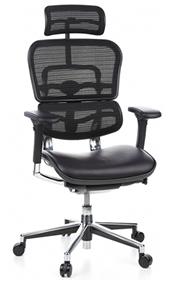Ergohuman Leather Seat - Mesh Back Combination
