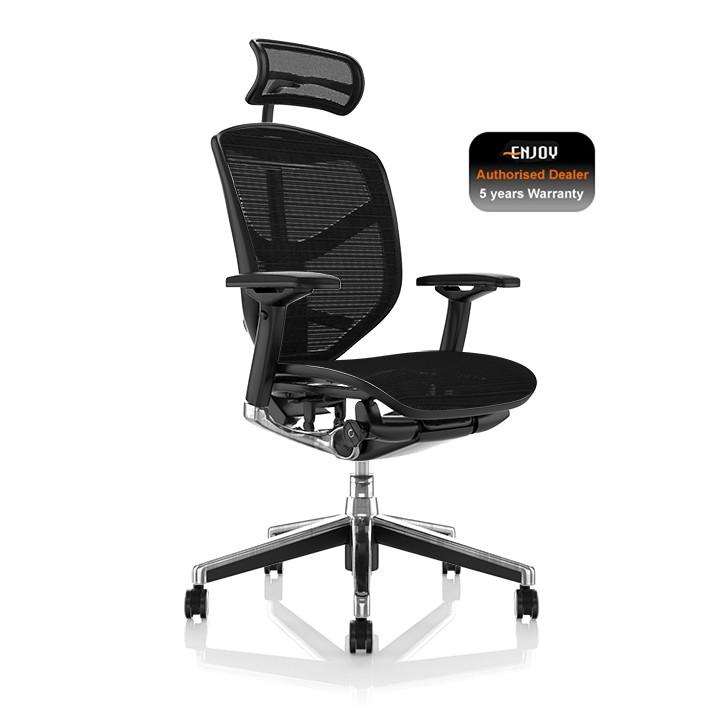 Amazing Enjoy Ergonomic Office Chair Home Interior And Landscaping Ologienasavecom