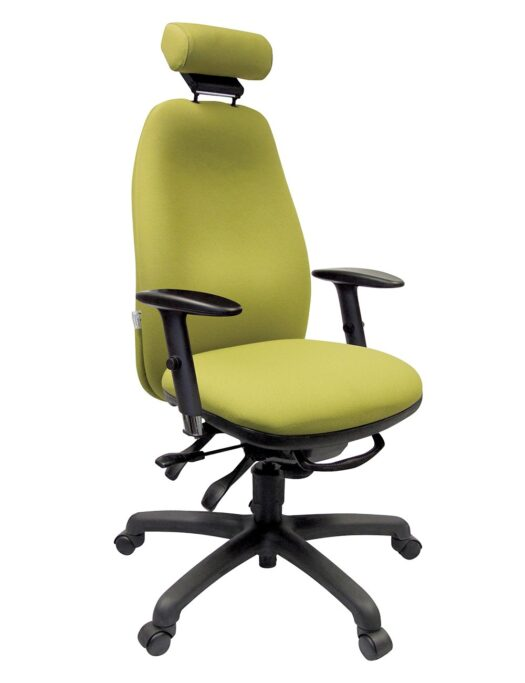 Adapt 670 Ergonomic Office Chair