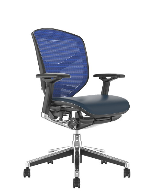 Enjoy Elite Black Leather Seat, Blue Mesh Back Office Chair