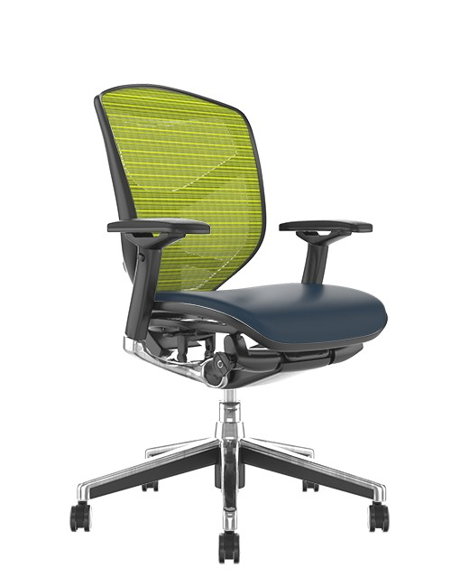 Enjoy Elite Black Leather Seat, Green Mesh Back Office Chair