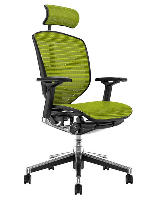 Enjoy Elite Office Chair Green Mesh with Head Rest