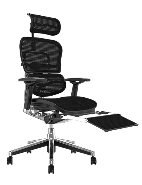 Ergohuman Black Mesh Office Chair with Leg Rest and Head Rest
