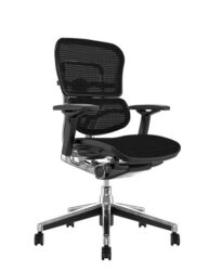 Ergohuman Office Chair - Black Mesh no Head Rest