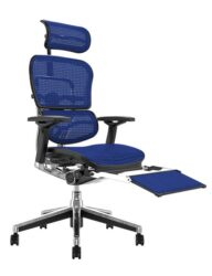 Ergohuman Elite Blue Mesh Office Chair with Head Rest and Leg Rest
