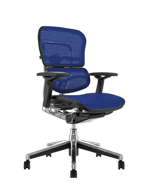Ergohuman Mesh Office Chair - Blue Mesh