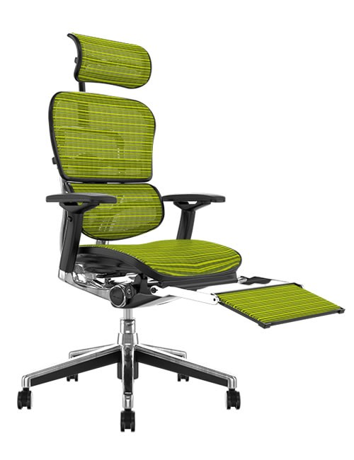 Ergohuman green Mesh Office Chair with Leg Rest and Head Rest