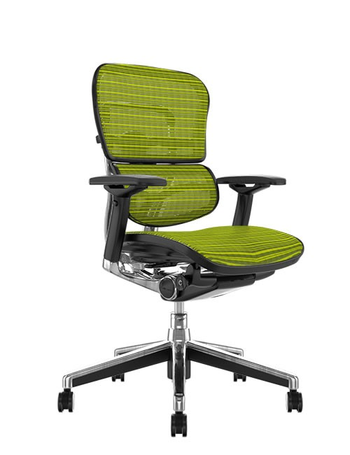 Ergohuman Mesh Office Chair - Green Mesh no Head Rest